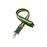 Aston Martin Racing Team Lanyard Green